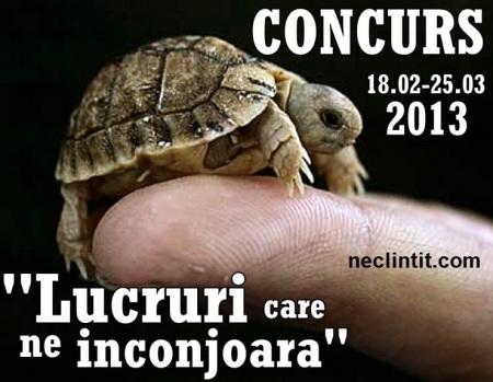 concurs-foto-neclintit-mar2013