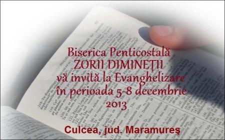 culcea-5dec2013