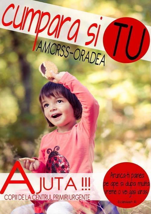 oradea-11dec2013