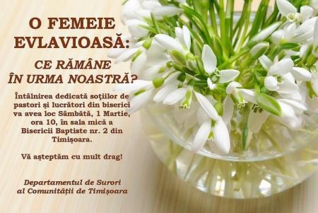 timisoara-1mar2014