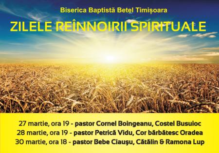 timisoara-27mar2014