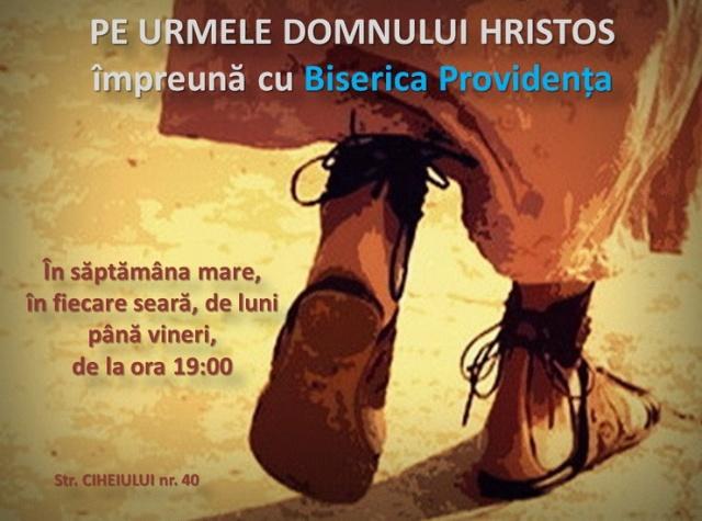 oradea-14apr2014-providenta
