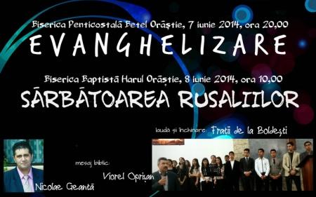 orastie-7iun2014