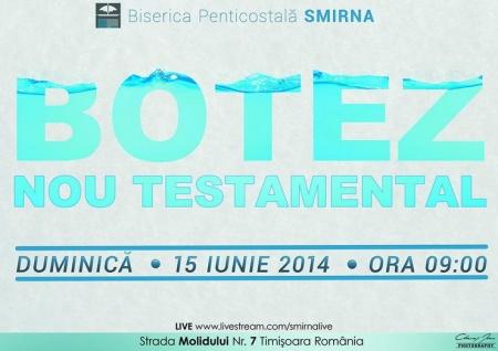 timisoara-15iun2014-smirna