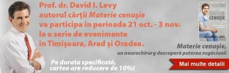 david-levy