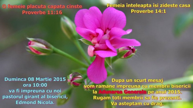 verona-8mar2015